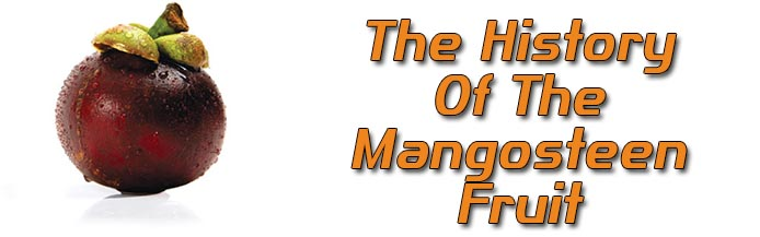 History of the mangosteen fruit footer UK